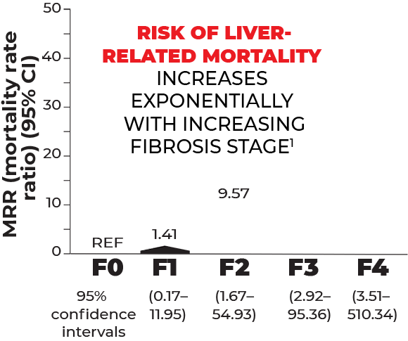 Liver related mortality increases exponentially by fibrosis stage